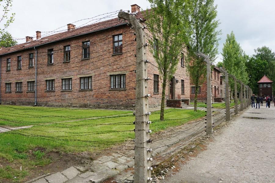 3 giorni a cracovia e non solo for Escursione auschwitz e miniere di sale lingua italiana